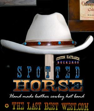 Spotted Horse Cowboy Hatband